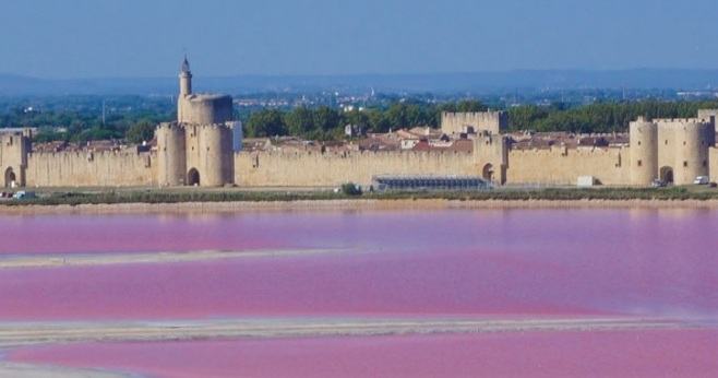 Photo of AIGUES-MORTES Les visites des salins reprennent ce week-end