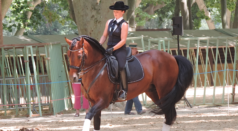 Rencontres equestres mediterraneennes beaucaire 2018
