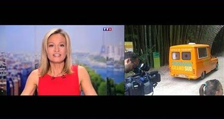 Photo of MÉDIAS Cévennes : l'office de tourisme ambulant Biti sur TF1
