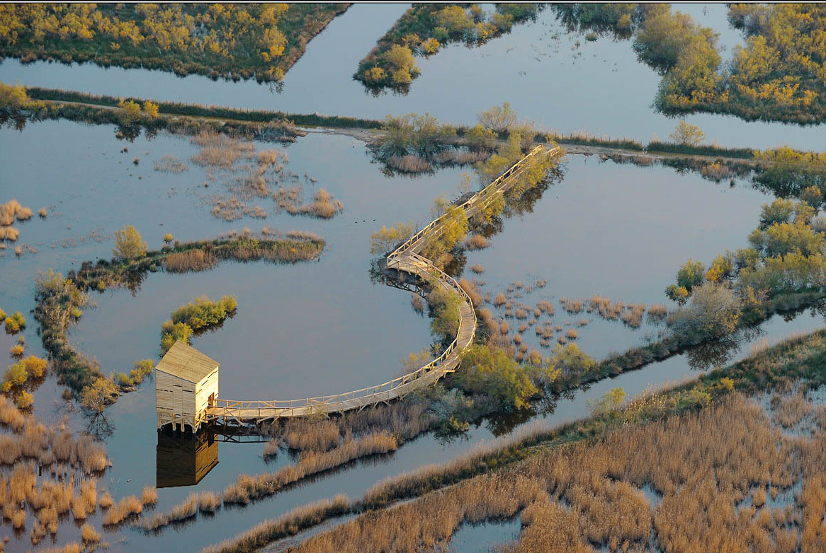 Photo of CAMARGUE Les secrets de la carte éco-touristique et patrimoniale