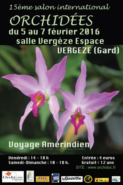 orchidees-vergeze