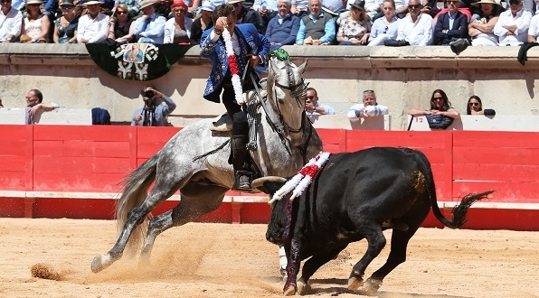 Photo of TOROS Pablo Hermoso de Mendoza met sa vie en lignes…
