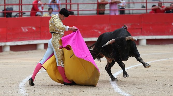 Photo of TOROS Beaucaire : sa novillada et ses surprises