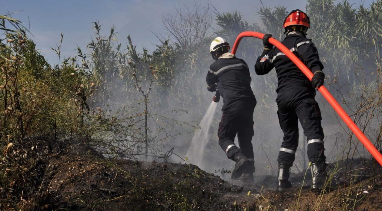 Photo of MOUSSAC Incendie et vent violent : 2 hectares sinistrés