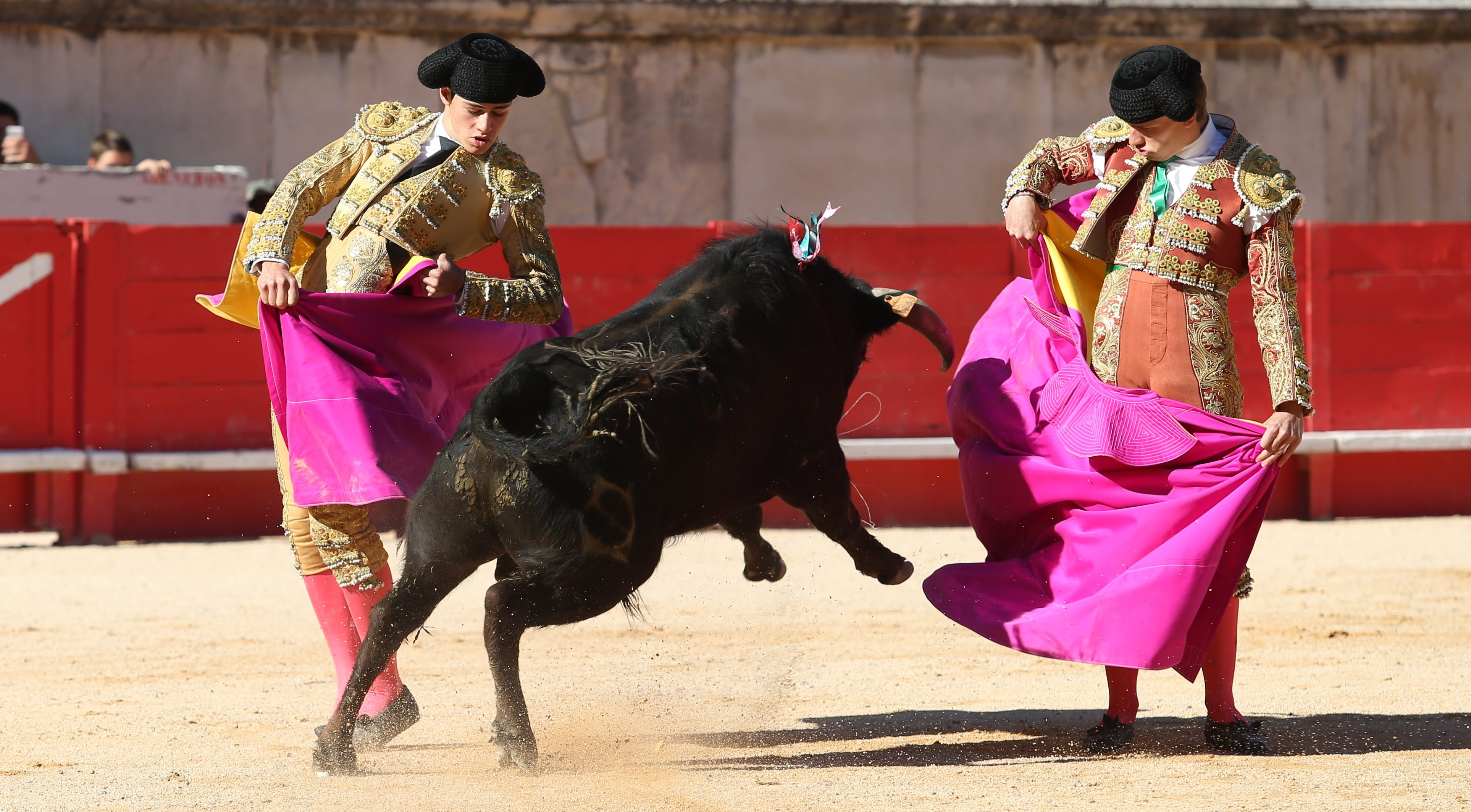 Photo of TOROS El Rafi remporte le 24ème Trophée Nimeño II