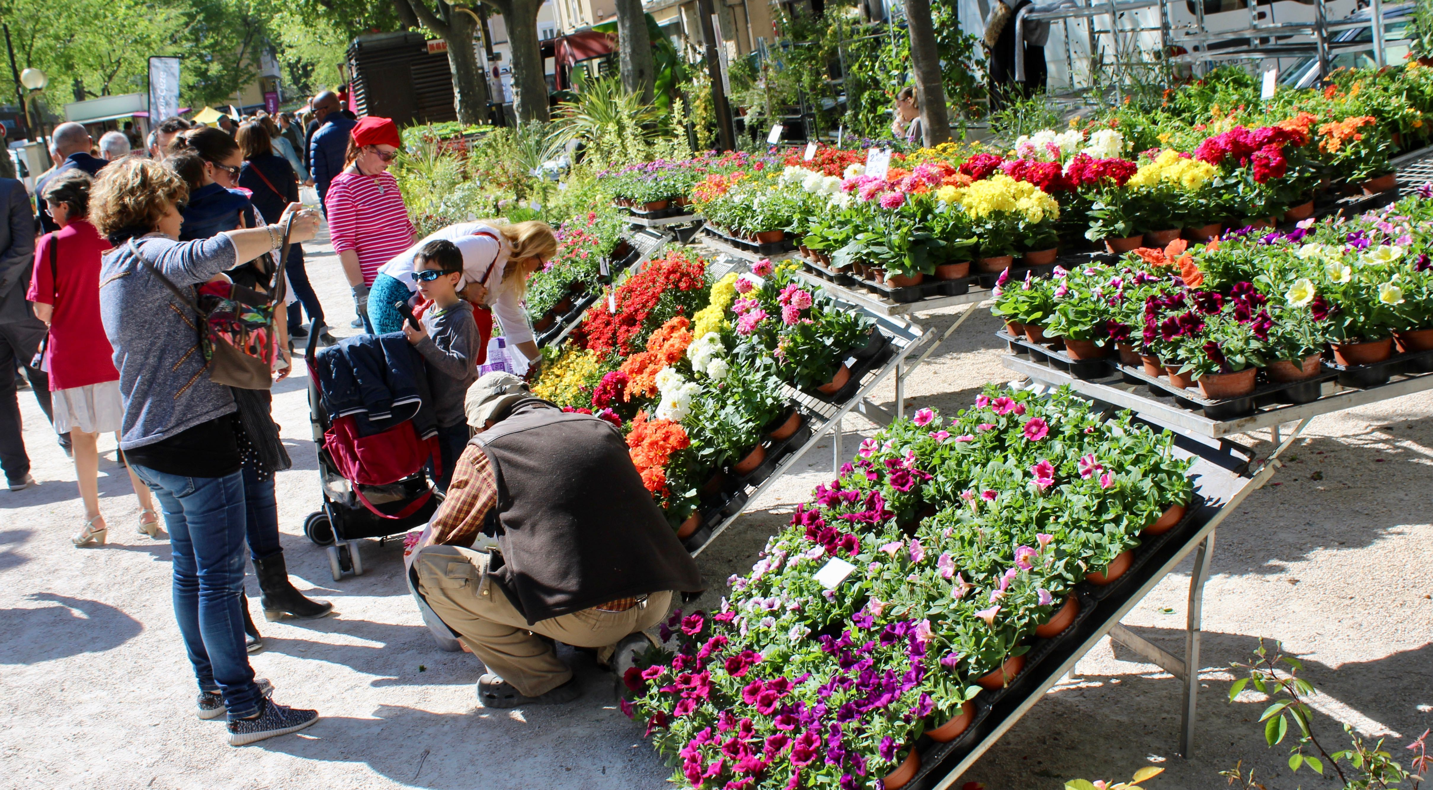 Photo of BAGNOLS En images : les fleurs investissent la ville