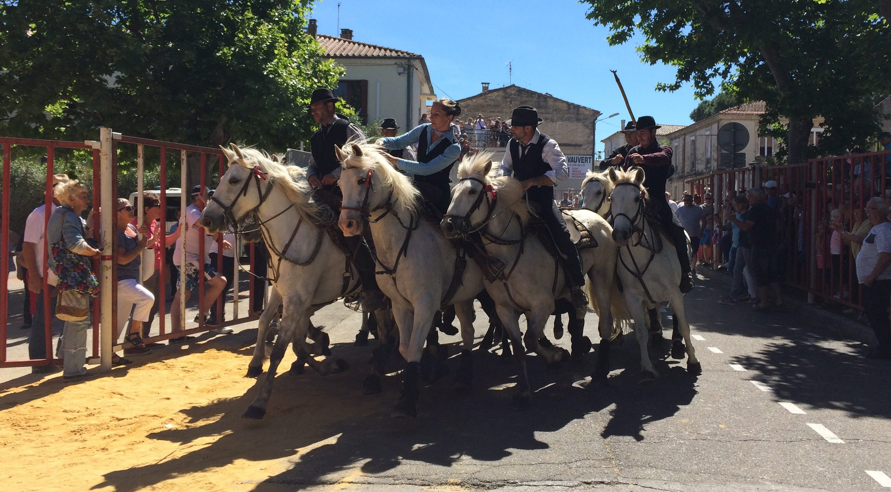 Photo of VAUVERT Concours d'abrivado et week-end taurin traditionnel