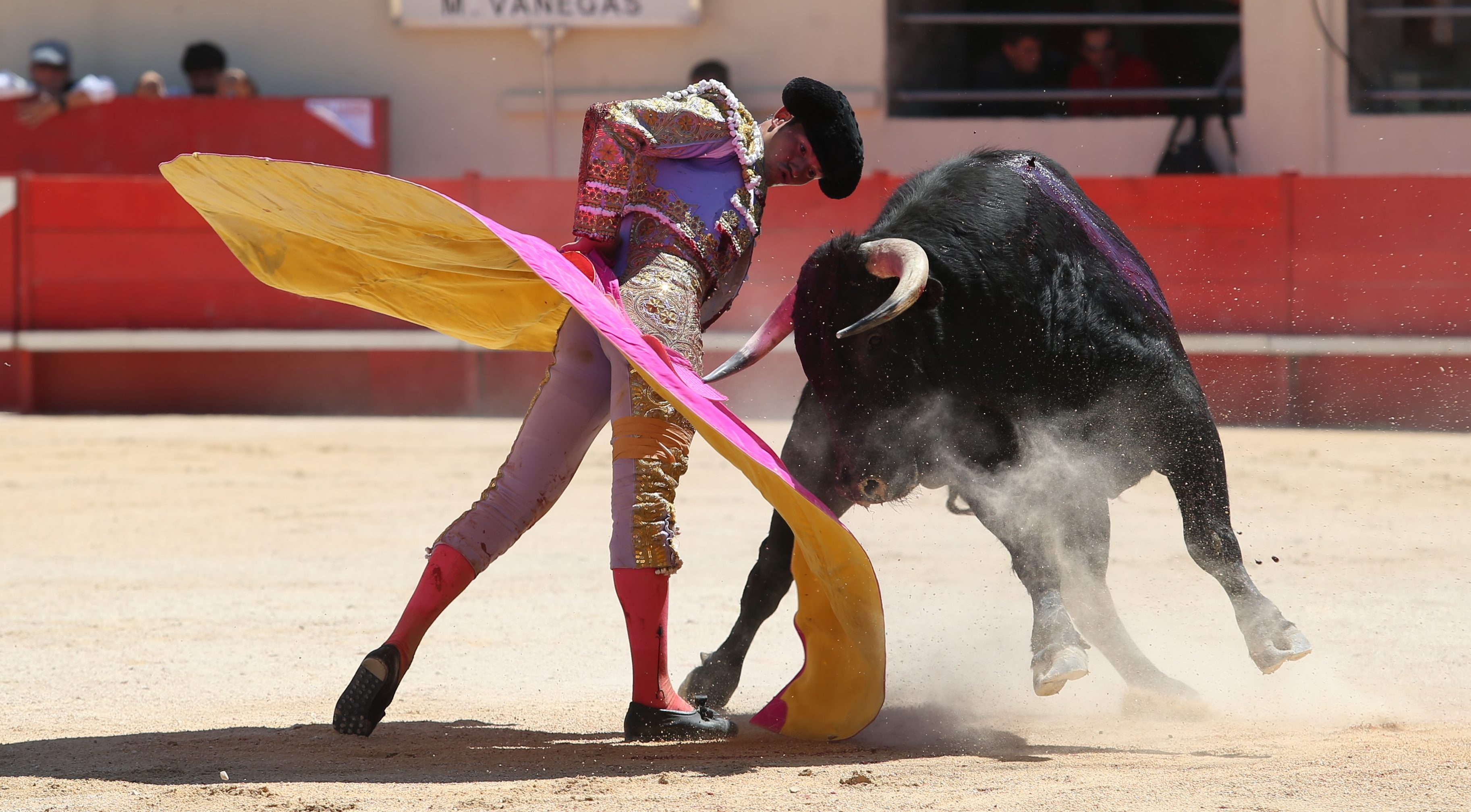 Photo of FERIA D'ALÈS Manolo Vanegas, prêt à devenir matador de toros
