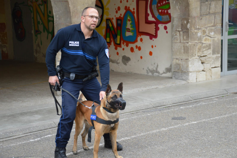 beaucaire-2017-entrainement-police-municipale-brigade-canine-21
